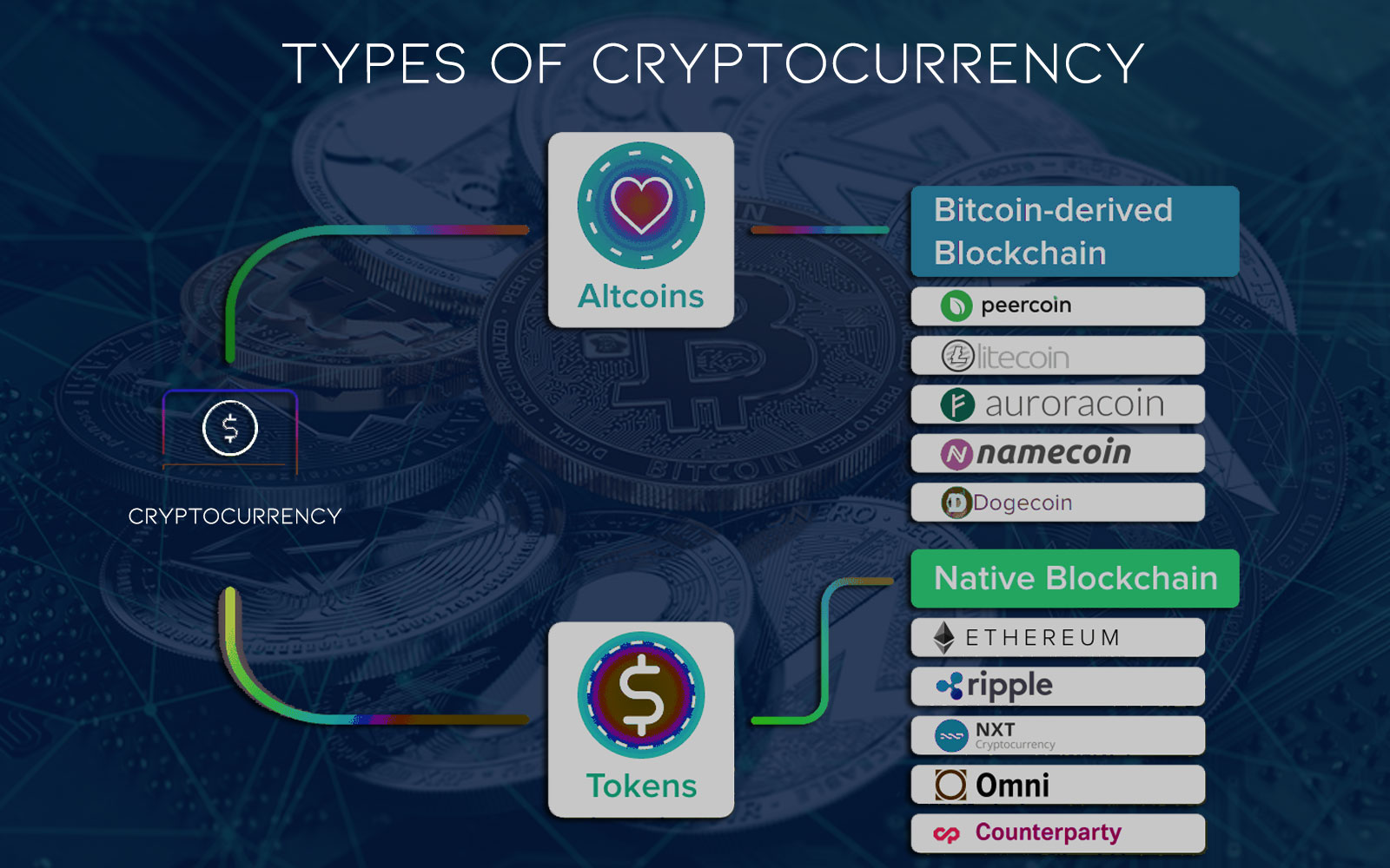 A Visual Organization of Coins, Tokens, and Altcoins | Parangat